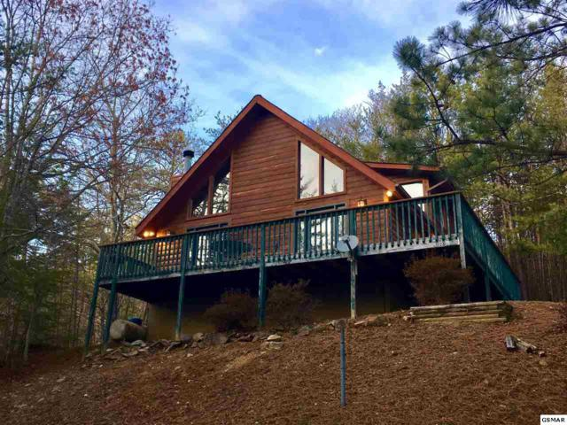 840 Boone Acres Ln, Pigeon Forge, TN 37863 (#214318) :: Billy Houston Group