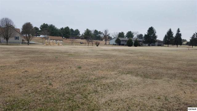 Lot 2443 Inverness Drive, Baneberry, TN 37890 (#214322) :: Colonial Real Estate