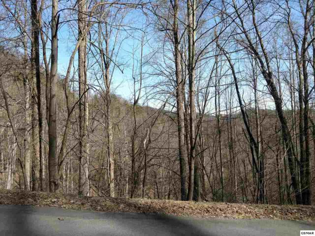 Lot 11 Whetstone Road, Sevierville, TN 37862 (#214330) :: Four Seasons Realty, Inc