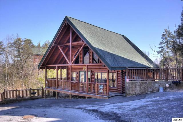 1719 Summit View Big Black Bear , Sevierville, TN 37862 (#214428) :: Colonial Real Estate