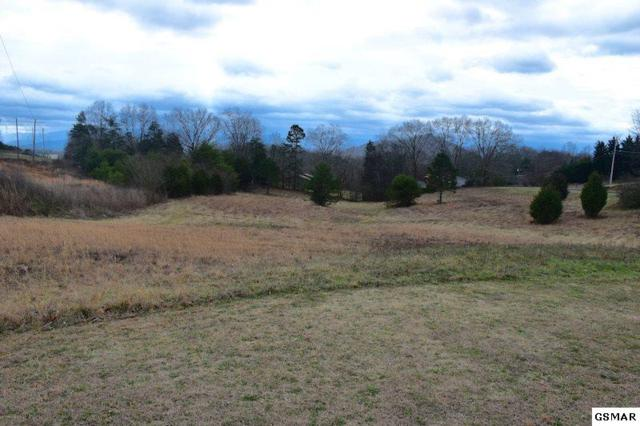 Lot 1 Mckinney Dr, Sevierville, TN 37876 (#214433) :: Billy Houston Group