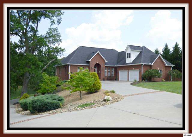 352 Back Nine Dr., Baneberry, TN 37890 (#214443) :: Colonial Real Estate