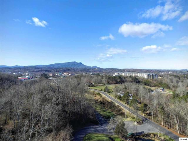 Lot 130 Alpine Village Way 1 Block From Th, Pigeon Forge, TN 37863 (#214480) :: Billy Houston Group