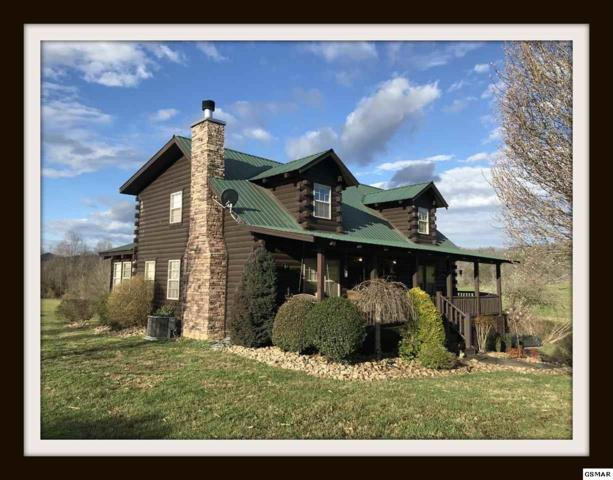 3480 Valleydale Way, Sevierville, TN 37862 (#214505) :: Colonial Real Estate