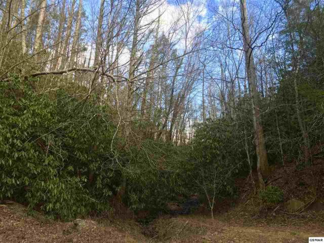 34 Acres Branam Hollow Rd, Gatlinburg, TN 37738 (#214525) :: The Terrell Team