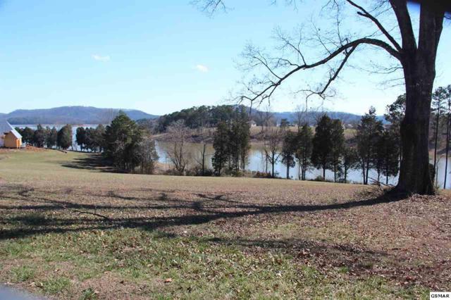 Lot 24 Blount Circle, Rutledge, TN 37861 (#214528) :: Billy Houston Group