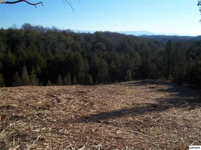 Lot 29 Lake Smoky Rd, Sevierville, TN 37876 (#214536) :: Billy Houston Group
