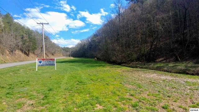 1311 Little Cove Rd, Sevierville, TN 37862 (#214560) :: Billy Houston Group