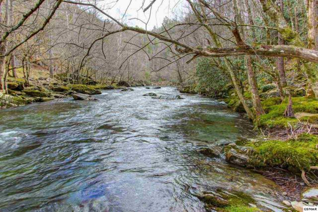 Lot 17 Riversong Way, Sevierville, TN 37876 (#214568) :: Four Seasons Realty, Inc