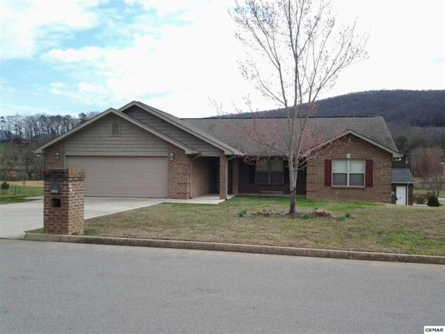 3208 Sybill Lee Lane, Sevierville, TN 37876 (#214574) :: Colonial Real Estate