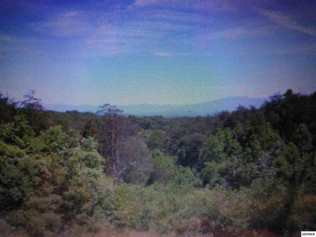 672, 674, 676 Stockton Dr Lots 63, 64, 65, Sevierville, TN 37876 (#214611) :: Billy Houston Group