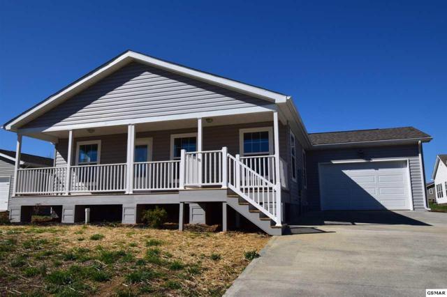 1508 Julia Allison Dr, Sevierville, TN 37876 (#214625) :: Colonial Real Estate
