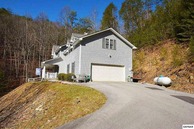 2673 S Clear Fork Road, Sevierville, TN 37862 (#214632) :: Four Seasons Realty, Inc