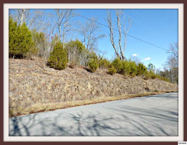 Lot 52 Fork Horn Tr., Dandridge, TN 37725 (#214644) :: Billy Houston Group