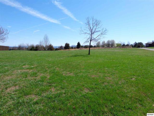 189 Golf View Blvd, Dandridge, TN 37725 (#214647) :: Four Seasons Realty, Inc