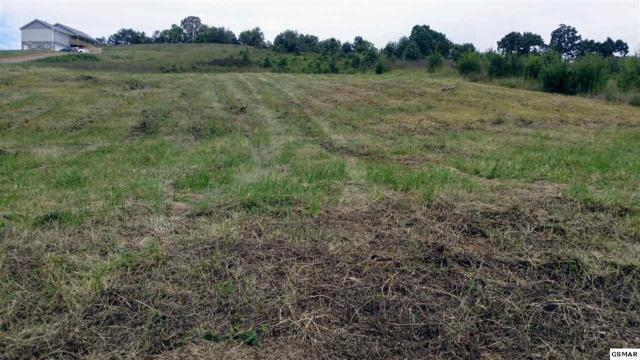 Lot 5 Cate Property, Kodak, TN 37764 (#214670) :: Billy Houston Group
