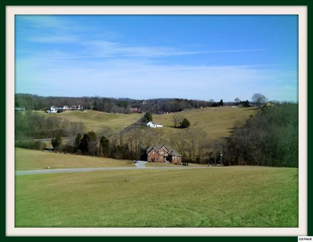 Lot 76 Serenity Overlook, Dandridge, TN 37725 (#214689) :: Colonial Real Estate