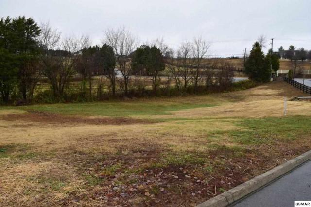 1110 Gregory Valley Dr, Sevierville, TN 37876 (#214696) :: Colonial Real Estate