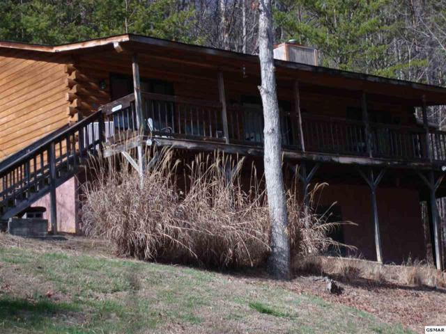 3960 Millers Ridge Way, Sevierville, TN 37862 (#214712) :: Colonial Real Estate
