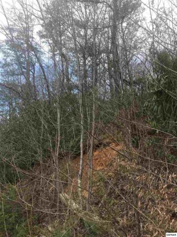 Lot 24 Old Smoky High Top Rd, Gatlinburg, TN 37738 (#214714) :: Billy Houston Group
