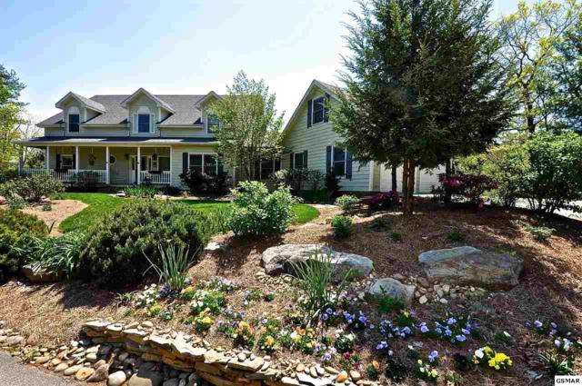 727 Bear Den, Townsend, TN 37882 (#214715) :: Colonial Real Estate