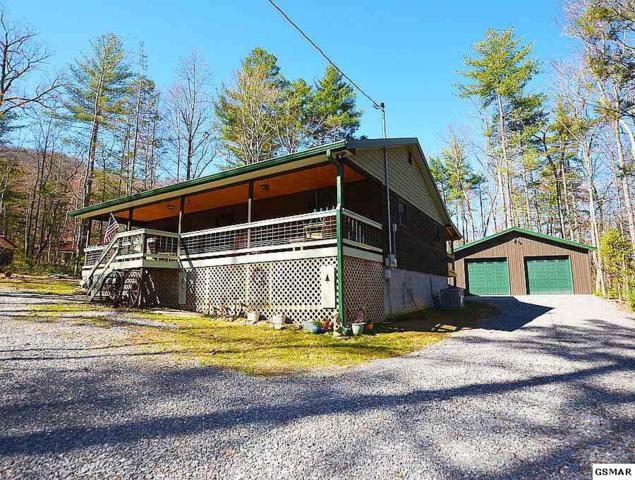 3395 Rocky Ridge, Cosby, TN 37722 (#214720) :: Four Seasons Realty, Inc