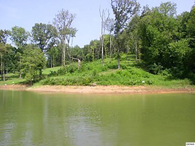 Lot 06R Lakeside Drive, White Pine, TN 37890 (#214782) :: Billy Houston Group