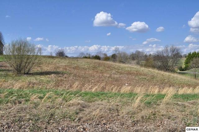 1602 Brahman Lane, Seymour, TN 37865 (#214804) :: Billy Houston Group
