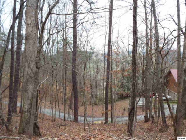 Lot 30 & 31 Whippoorwill Hill Way, Sevierville, TN 37862 (#214812) :: Billy Houston Group