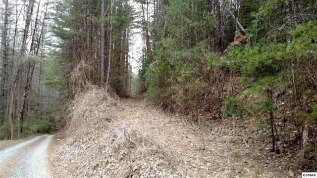 6.49 Acres Corey Way, Del Rio, TN 37727 (#214817) :: Four Seasons Realty, Inc