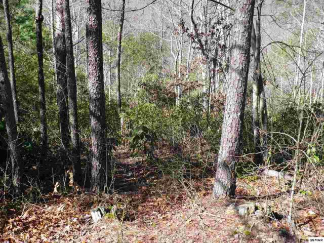 Lot #7 Little Round Top Lane, Townsend, TN 37882 (#214818) :: SMOKY's Real Estate LLC