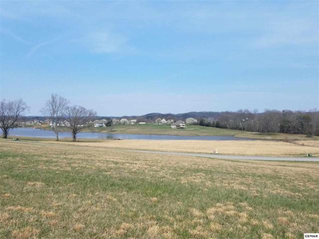Lot 138 Fair Meadow Dr, Dandridge, TN 37725 (#214851) :: Four Seasons Realty, Inc
