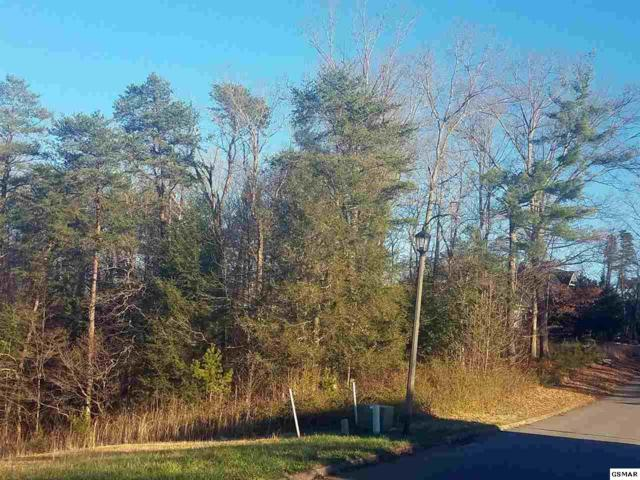 LOT 19 Riceland Dr, Sevierville, TN 37862 (#214863) :: Billy Houston Group