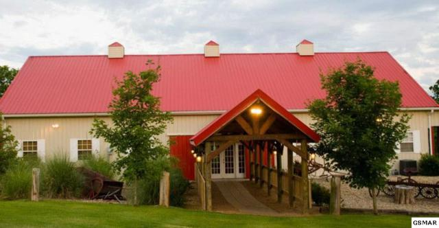 1111 Martin Mill Pike, Rockford, TN 37853 (#214924) :: Four Seasons Realty, Inc