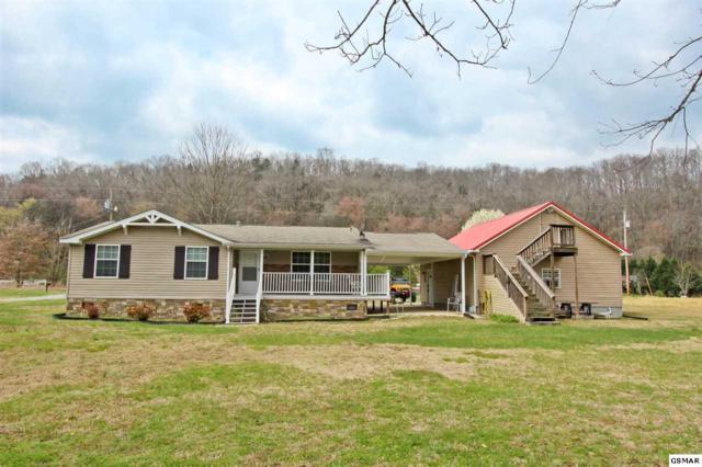 1477 River Chase Trail, Newport, TN 37821 (#214946) :: The Terrell Team