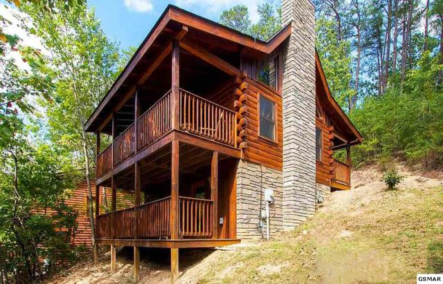 "3413 Steven Court ""Buck-Naked"", Pigeon Forge, TN 37863 (#214961) :: The Terrell Team"