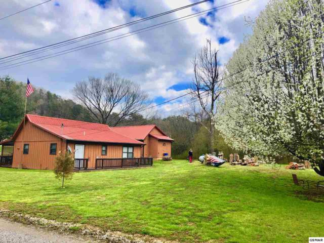 3131 Cosby Hwy, Cosby, TN 37722 (#214977) :: Colonial Real Estate