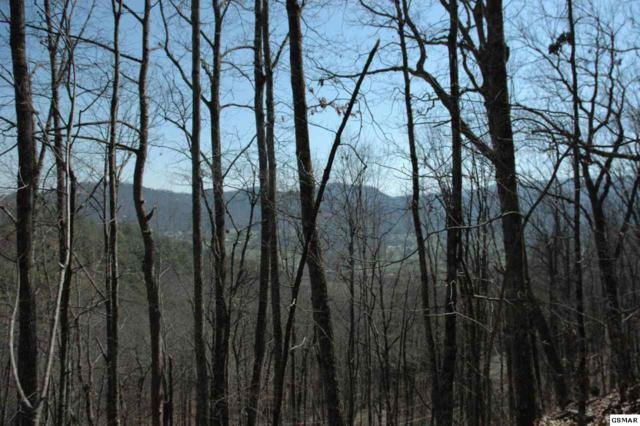 Lot 29 Whippoorwill Hill Way, Sevierville, TN 37862 (#214984) :: Billy Houston Group