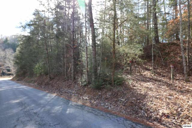 Lot 19A Sencebaugh Drive, Sevierville, TN 37876 (#214992) :: The Terrell Team