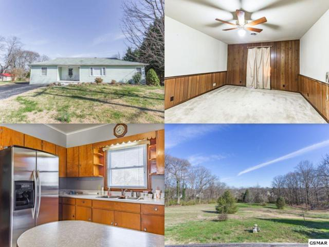 540 Murray Drive, Knoxville, TN 37912 (#215002) :: The Terrell Team