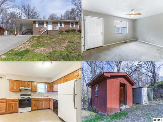 252 Old Clinton Highway, Powell, TN 37849 (#215009) :: Billy Houston Group