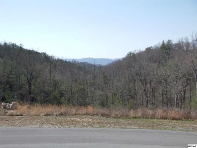 Lot 118 Summit Trails Dr, Sevierville, TN 37862 (#215013) :: Billy Houston Group