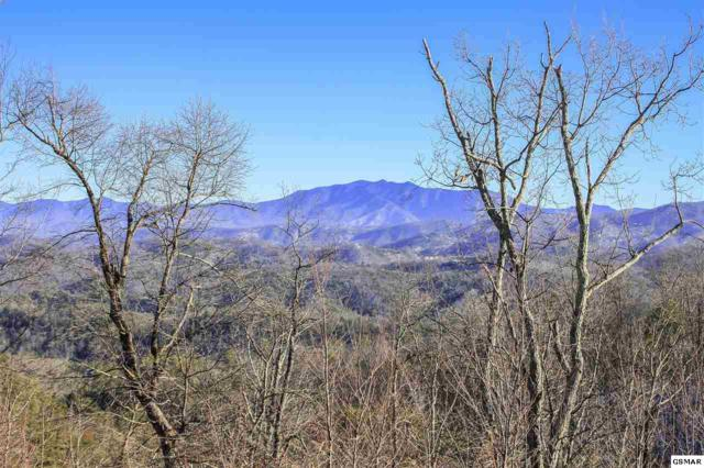 Lot 100 Laurel Cove Trail, Sevierville, TN 37876 (#215016) :: The Terrell Team