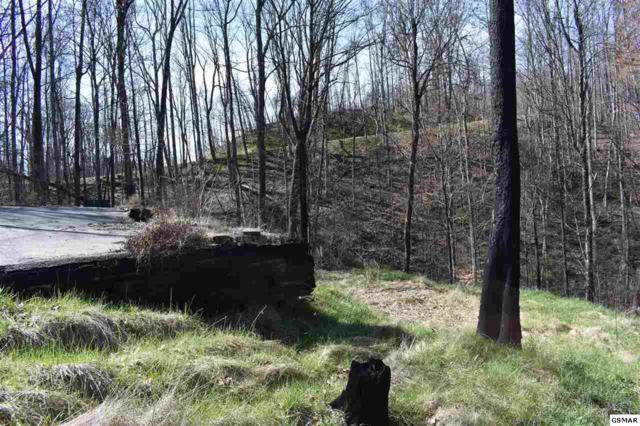 921 Statham Way, Gatlinburg, TN 37738 (#215025) :: Colonial Real Estate