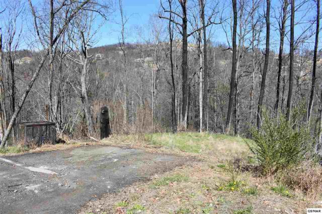 927 Statham Way, Gatlinburg, TN 37738 (#215027) :: Colonial Real Estate