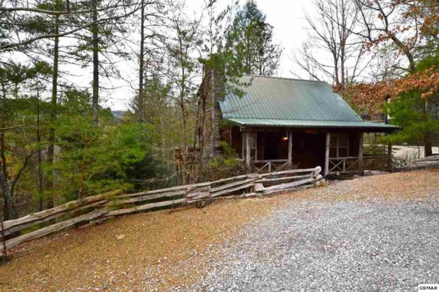 133 Cutter Gap Rd, Townsend, TN 37882 (#215029) :: Colonial Real Estate
