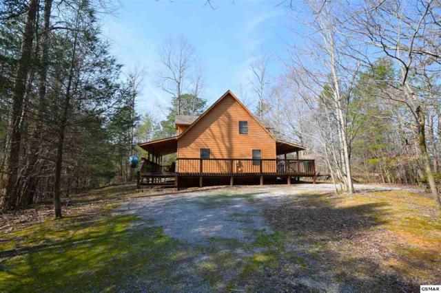 3850 Saddle Brook Way, Sevierville, TN 37862 (#215032) :: Four Seasons Realty, Inc