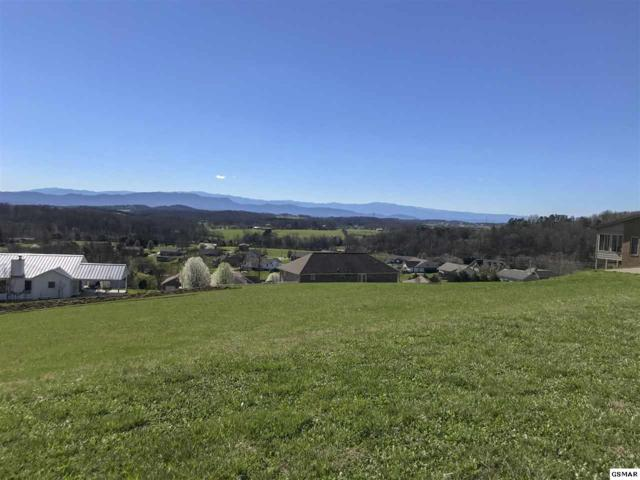 Lot 77 Scenic View Dr, Talbott, TN 37877 (#215043) :: Colonial Real Estate