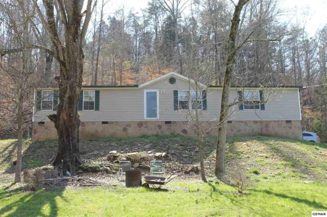 338 S Rogers Rd, Seymour, TN 37865 (#215046) :: Colonial Real Estate