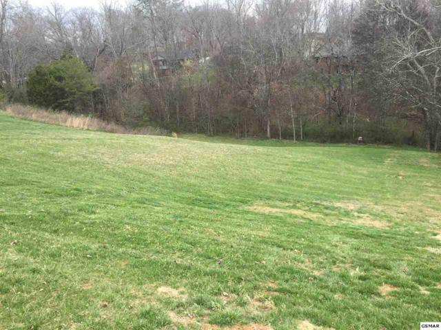 236 Mississippi Avenue, Seymour, TN 37865 (#215056) :: Colonial Real Estate